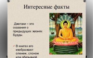 Интересные факты о будде