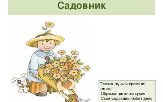 Загадка о садовнике
