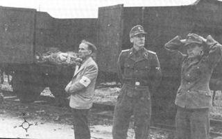 Бойня в дахау — за что американцы расстреляли военнопленных