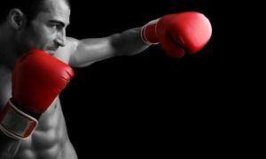 Интересные факты о боксе
