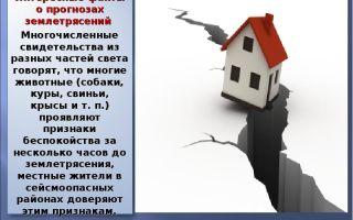 Интересные факты о землетрясениях