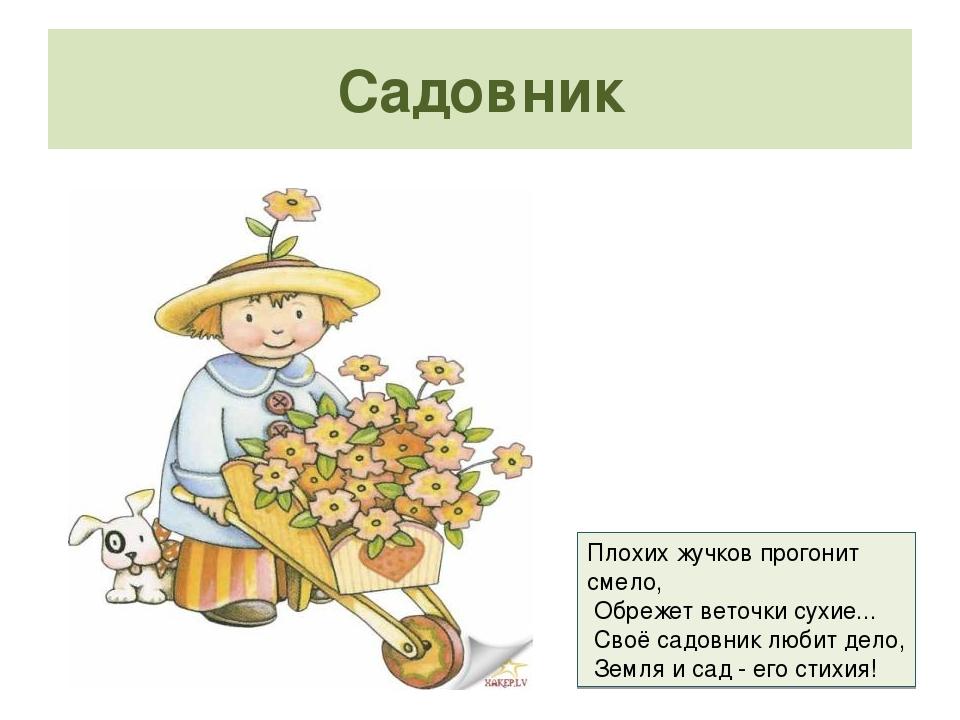 Загадки садовод